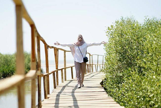 Pantai Mina Mangrove